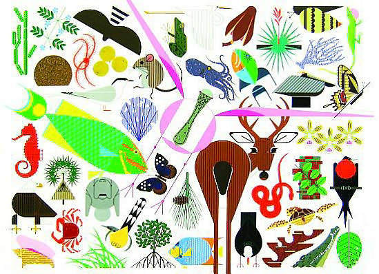 """Charley Harper's Animal Kingdom"" with an introduction by Todd Oldham"