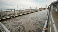 'Superbug' found in US wastewater treatment plants