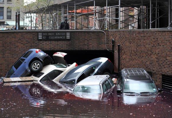 Super storm Sandy caused severe flooding in lower Manhattan. It also flooded the basement of an NYU laboratory, killing thousands of laboratory mice crucial for scientific research.