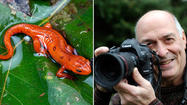 Ellicott City photographer brings nature to life
