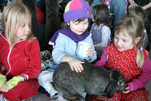 Enjoy winter fun at Polar Adventure Days on Northerly Island with live animals, live entertainment, ice carving demonstrations and more.