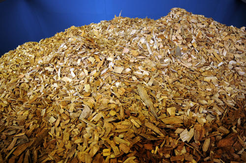 A new biomass heating system has been built on the campus of the Hotchkiss School in Lakeville. Large hoppers hold woodchips that provide fuel to heat the entire Hotchkiss campus.