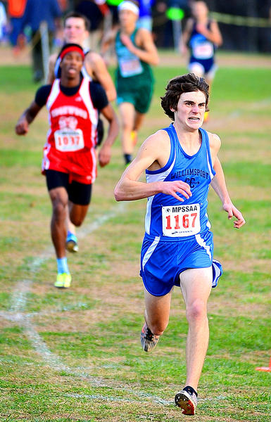 Williamsport senior Cody Bowman closes in on the finish line for a fifth-place finish in the Class 2A boys race at the Maryland State Cross Country Championships on Saturday at Hereford High School.