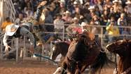 BRAWLEY – Beyond the glittering tiaras of the Cattle Call queen and the kicked-up dust of the rodeo athletes, there's the real royalty of the day, the families of Cattle Call.