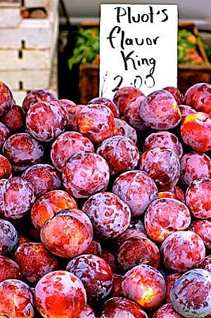 Pluots at the farmers market