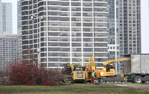 The trees that were taken down in part of Grant Park will be replaced by 1,000 new ones of various varieties. Maggie Daley Park is expected to be completed by 2015.