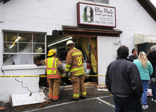 A Kia Rondo crashed through the front of the Bird Mania store at 3235 W. Emmaus Ave. in Salisbury Township Tuesday morning. The driver of the vehicle was transported to a hospital. The owner of the store, Debbie Lentz was in a back room at the time and was unharmed. All of the birds in the store are safe and were transported out to safety by the Western Salisbury fire department.