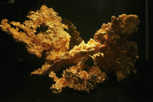 This is the upper part of the Fricot nugget, which at 13.8 lbs is the largest remaining specimen of crystallized gold from 19th century California. Thieves who broke into the California State Mining and Mineral Museum missed the nugget while stealing other gold nuggets and gems.