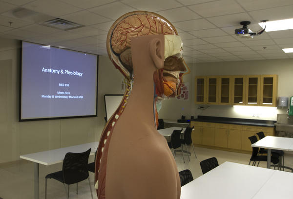 A view of the anatomy and physiology class inside Stratford University in Newport News. The university will offer degrees in health sciences, nursing, culinary arts, hospitality management, business management, and software engineering