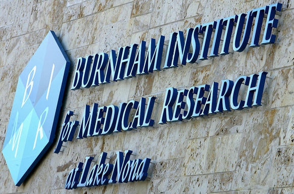Burnham Institute for Medical Research