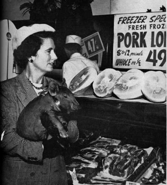 A young pig named Patricia Ann went everywhere with her La Canada owner, Gerry Mentz in the fall of 1952. Above, they visit a the meat department of a local market, although the viewer is left to guess how Patricia Ann felt about what she saw there.