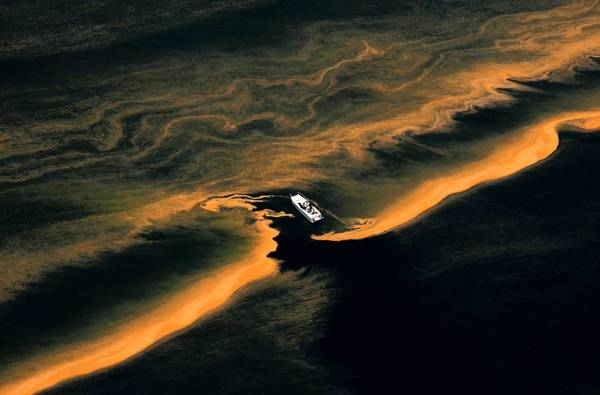An oil slick from the 2010 Deepwater Horizon disaster is seen from the Chandeleur Islands in the Gulf of Mexico. BP will pay a $4-billion criminal fine in the spill.