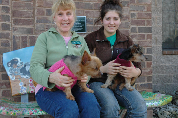 Elizabeth Hart (left) and Kaylyn Kalkofen (right), both animal care attendants at the Little Traverse Bay Humane Society in Harbor Springs, hold two elderly Yorkies that were left at the humane society. Small dogs  especially those that are elderly  are particularly susceptible to the cold.