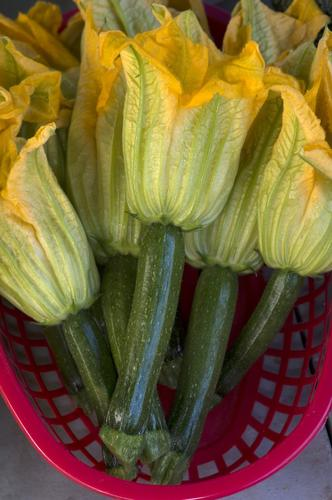Zucchinis with their blossoms grown by Phil Green (Life's a Choke / Green Farms) in Lompoc.