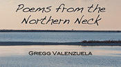 "Poetry fans in Hampton Roads should pick up ""Poems from the Northern Neck,"" by retired doctor turned poet Gregg Valenzuela. The Virginia native (and board certified gastroenterologist and heptologist, according to the business card that came with the book) writes about the Tidewater area."