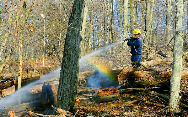 A firefighter hoses down a wooded area off Crystal Falls Drive near Smithsburg, where a brush fire broke out Monday morning.