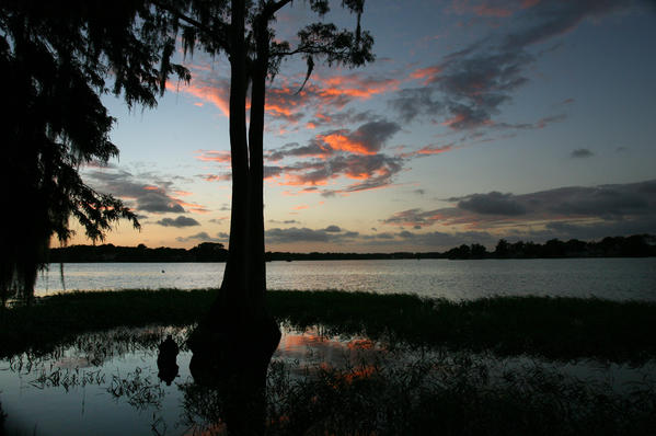Sunrise at Mosquito Lagoon. And Sunset at Lake Maitland (beneath the egret-filled trees at Kraft Azalea Garden).