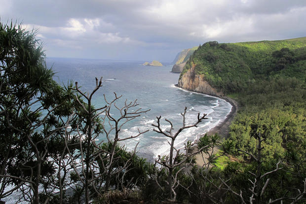 Waves pound the beach at Pololu Valley, as seen from the trail at road's end on Hawaii's Big Island.