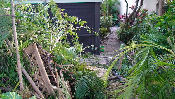 Backyard where Ford F-150 pickup truck came to rest after plowing into a tree in Coconut Creek