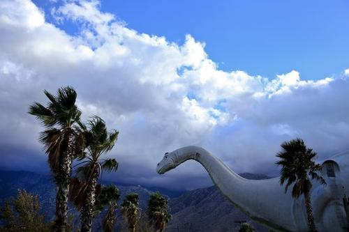 Dinny, a 150-foot-long apatosaurus, is one of two towering concrete dinosaurs standing guard in Cabazon, at the western gateway to Palm Springs and the other cities of the Coachella Valley. The towering creatures -- the other is Rex, a Tyrannosaurus rex -- were created by sculptor Claude Bell in the '70s and '80s from leftover freeway-building materials.