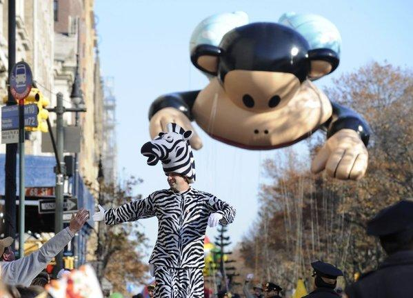 "A parade ""zebra,"" followed by a floating Julius the Monkey, high-fives a parade spectator."