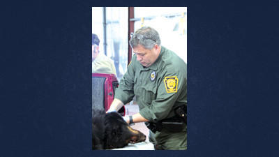 Pennsylvania Game Commission Land Management Group Supervisor Jack Lucas inspects and tags a bear Wednesday at the weigh station in New Centerville.