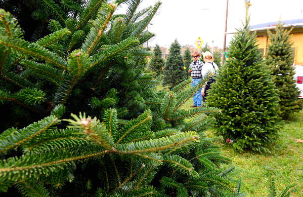 Mount Aetna Volunteer Fire Department is selling live trees this holiday season from their lot on Mapleville Road south of the Mount Aetna Road circle.
