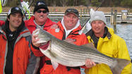 More than 800 anglers participate in MSSA Fall Classic Rockfish Tournament