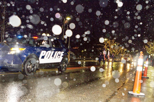 Santa Parade and Tree Lighting in Charlevoix