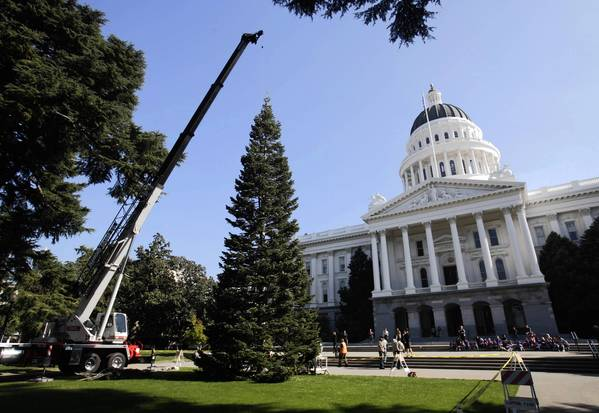 For some legislators in Sacramento, Christmas comes early in the form of trips and other freebies.