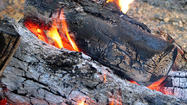 Recently, the improper disposal of ashes from fireplaces and woodstoves caused several wildland fires, according to a press release from the Virginia Department of Forestry. Wood ashes retain enough heat to ignite other combustible materials for several days. High winds can uncover still-hot coals and start a wildfire -- and potentially pose a serious threat to the safety of families and their homes.