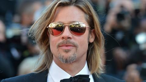 Brad Pitt's marriage equality donation