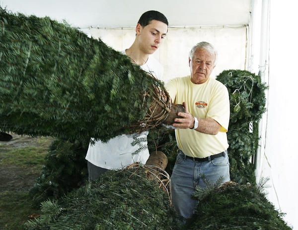 Harry Avetisyan, 16, brings a Christmas tree to Gary Casella, the owner of Casellas Christmas Trees in Burbank in back of Burbank High School on Tuesday, November 27, 2012. Casellas has sold trees in Burbank for 75 years.
