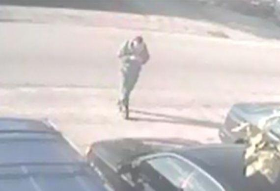 Detectives are searching for the burglar who is seen on surveillance video stealing a handgun from the glove compartment of a car in West Park
