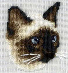 Cross-eyed cross-stitched cat