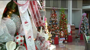 Decorating Trees for a Cause in Danville