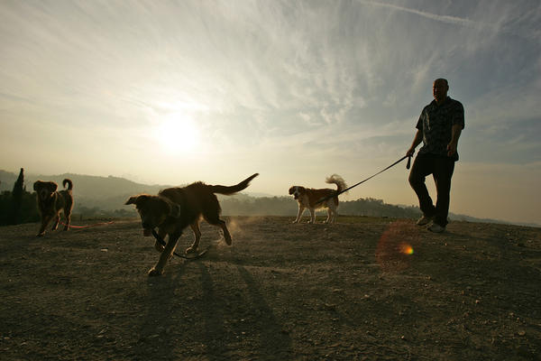 Chris Hogenesch of El Sereno walks his dogs on Elephant Hill in the El Sereno area of Los Angeles in 2009.