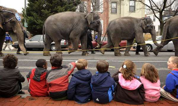 Children watch as elephants from the Ringling Bros. and Barnum & Bailey Circus parade in Washington.