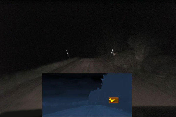 Test data of Autoliv's upcoming third-generation Night Vision infrared detection system.
