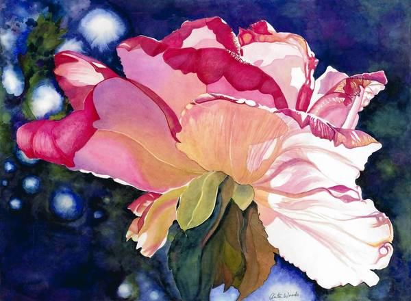 Painting of rose by Anita Woods.