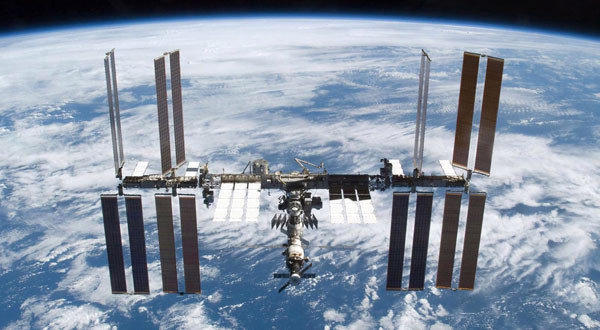 The International Space Station hosted an experiment with a spider that has since returned to Earth and is drawing much attention at the Smithsonian's National Museum of Natural History's Insect Zoo.