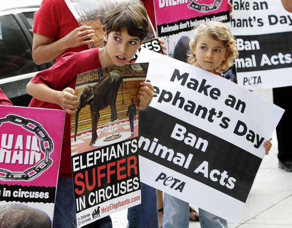 Kane Borchert, 11, left, and his brother Donavon, 7, take part in a pro-elephant rally