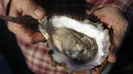 Oyster bars say Drakes Bay farm closure means higher prices