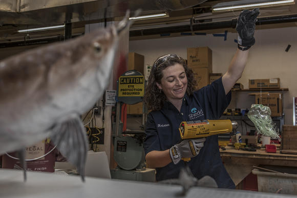 Kristen Neria, fabrication manager, makes plastic jelly from a recycled pop bottle at John G. Shedd Aquarium on Nov. 29.