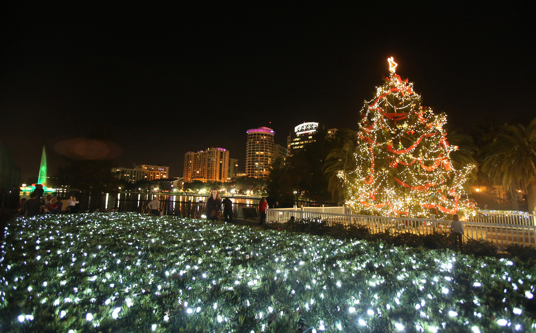 Pictures: Holiday lights from around the globe - Christmas in Orlando