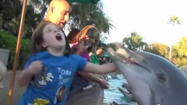 Dolphin bites girl at SeaWorld Orlando