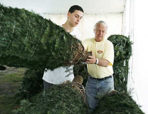 Harry Avetisyan, 16, brings a Christmas tree to Gary Casella, the owner of Casellas Christmas Trees in Burbank in back of Burbank High School on Tuesday, November 27, 2012.