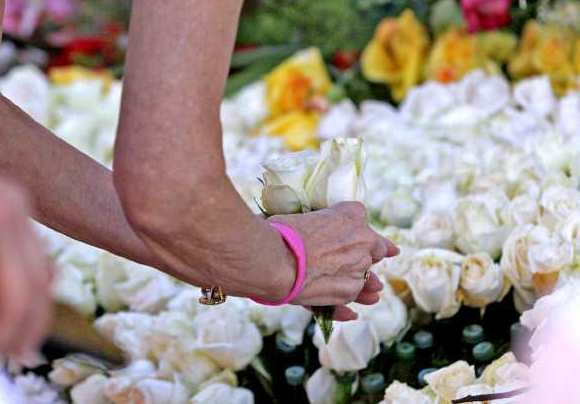 A woman pulls a rose from Glendale's 2011 Rose Parade float after the event.