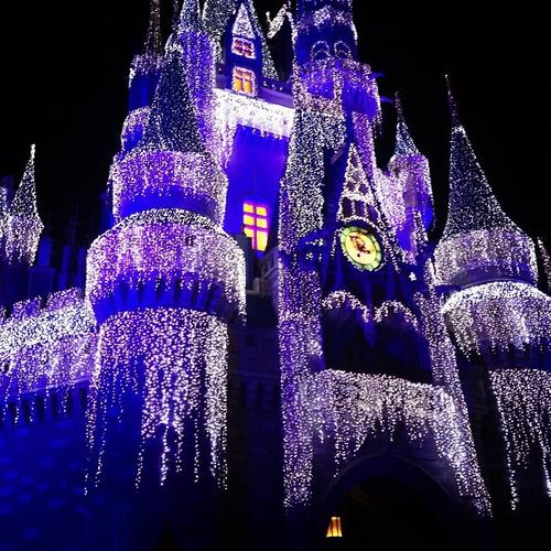 @bitterforsweet took this shot of Cinderella Castle lit up for the holidays at Disney's Magic Kingdom. <b>#thedailydisney</b>