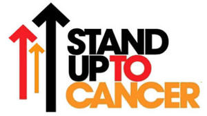 MLB announces online auction to benefit Stand Up to Cancer